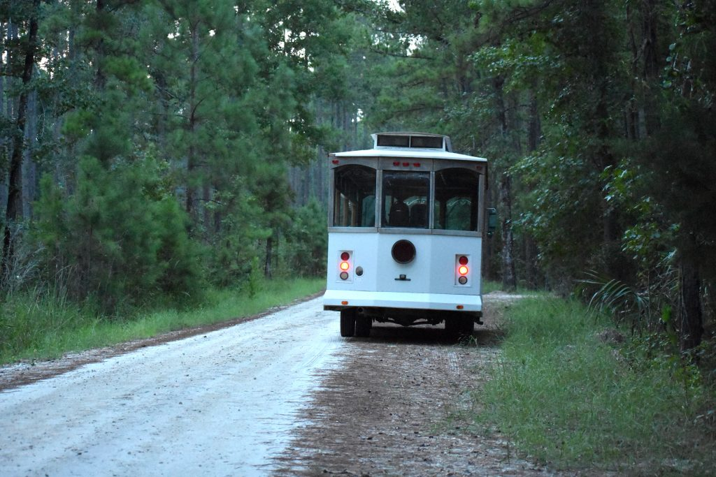 Marsh Trolley